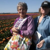 Pat and Sharon among the Tulips
