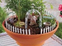 Join us to Plant a Fairy Garden