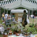 Here we are at the High Mountain Festival. That was the house plant table.