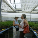 Sharon & Linda at Bluestone Perennials